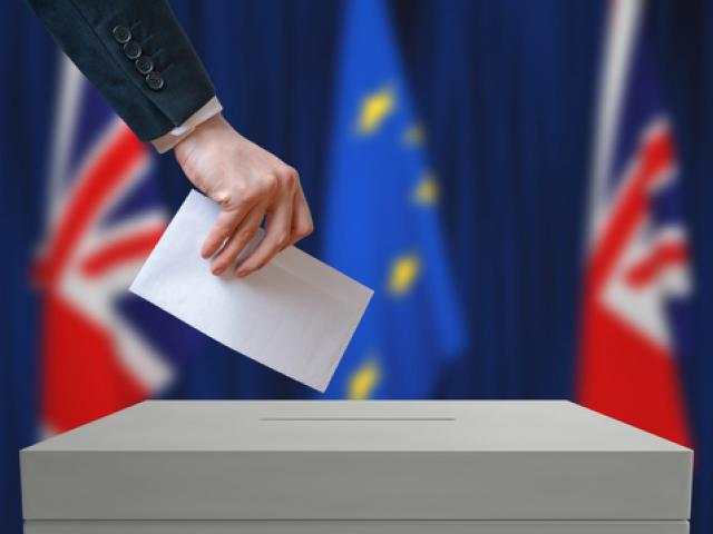 Equities recover; Brexit vote is the key event of the week