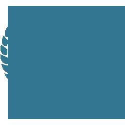 2019 Najlepsze doświadczenie handlowe