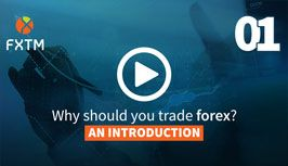 Video Edukasi Forex
